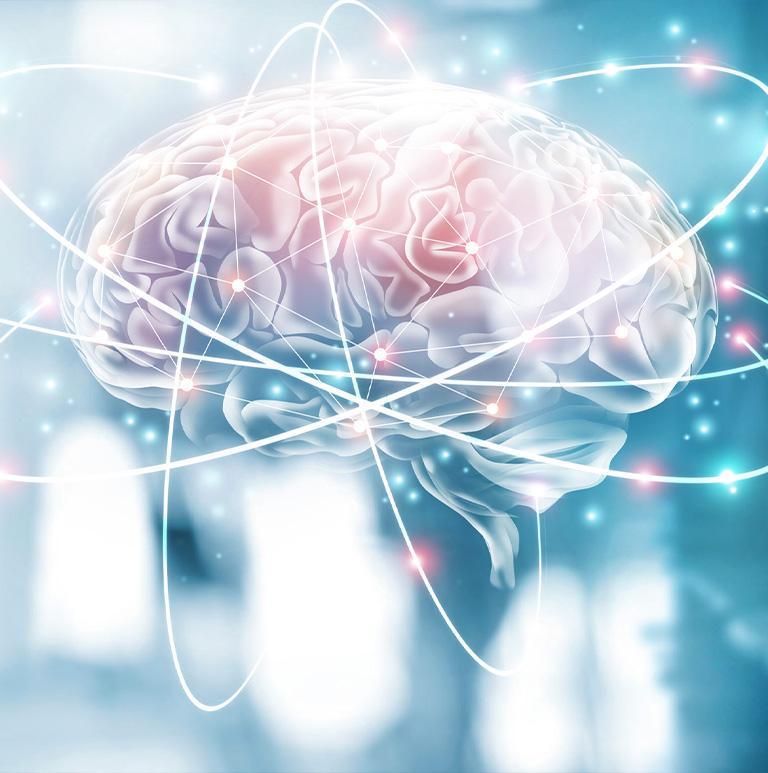 zdjęcie mózgu